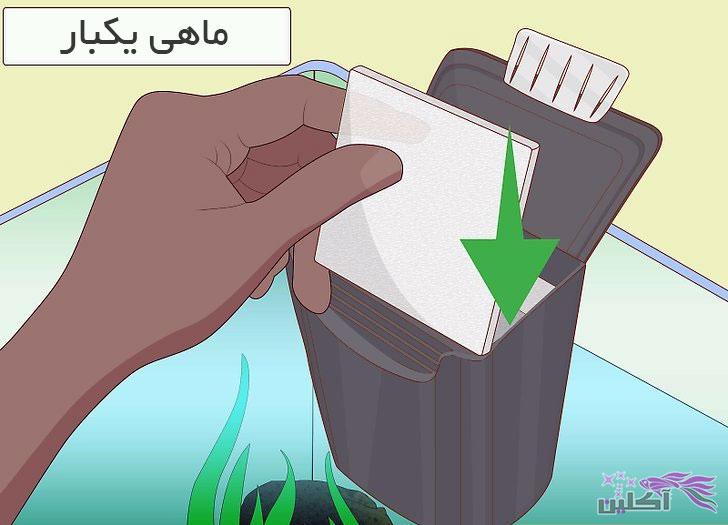 تمیز کردن اکواریوم